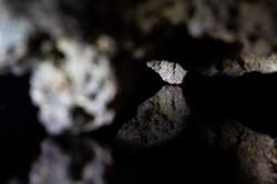 Cueva de las tres puntas