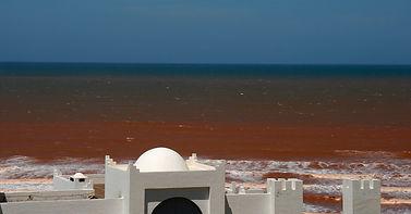 Centre d'Art Contemporain d' Essaouira. Ifitry