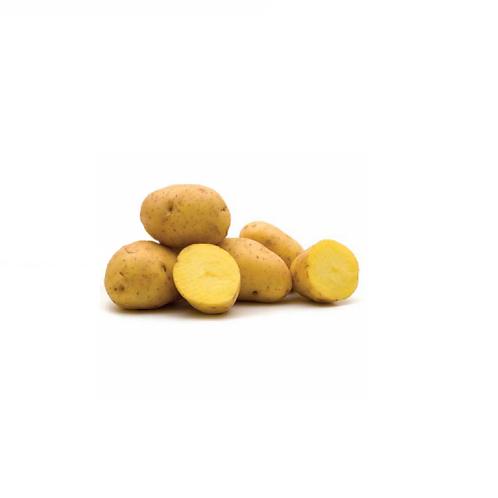 黄肉薯仔4个