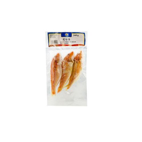 福洋红衫鱼340g