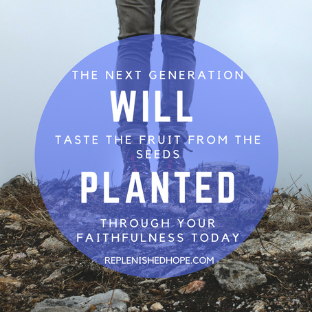 Seed You Plant Today