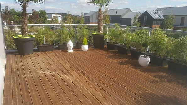 Terrasse bois pin brun SERRIS