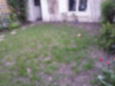 Terrasse bois exotique Serris Chessy Montevrain  Magny le Hongre Thorigny sur marne Lagny sur Marne LMJ77