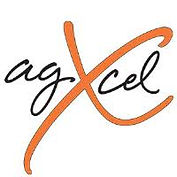 agXcel.jpg