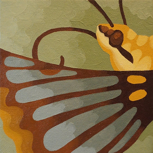 """Clear-wing Sphinx Moth"" 6"" x 6"" by Mary Bacon"