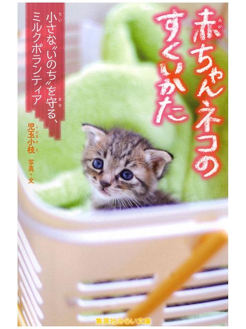 赤ちゃんネコのすくいかた