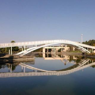 parque-juancarlos-kDsC--1190x800@abc.jpe