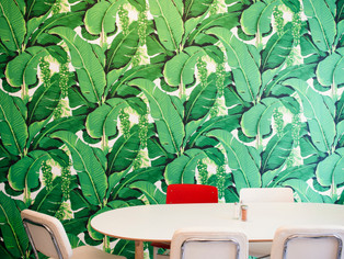 Stella's Tropical Cafeteria: fight the gloom