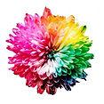 rainbow flower.jpg