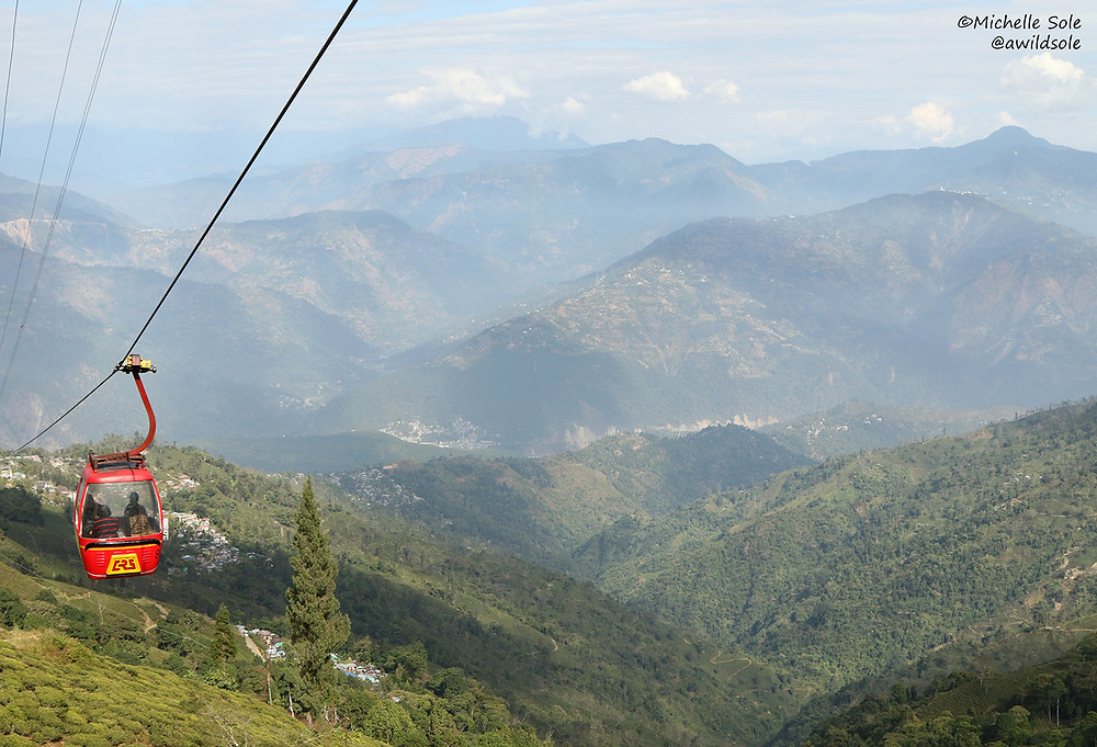 Gondola or cable car ride over tea plantations in India