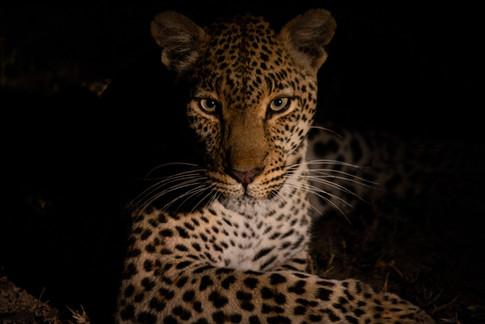Africa_michellesole-1047.jpg