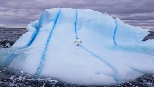 Antarctica_michellesole-122625.jpg