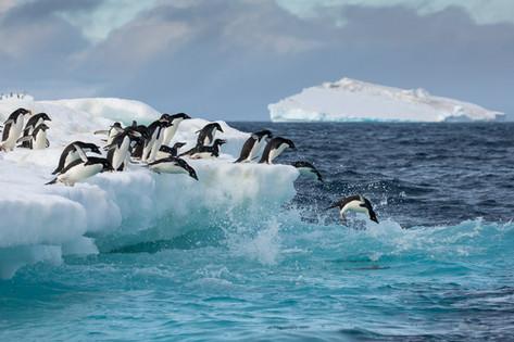 Antarctica_michellesole-6890.jpg