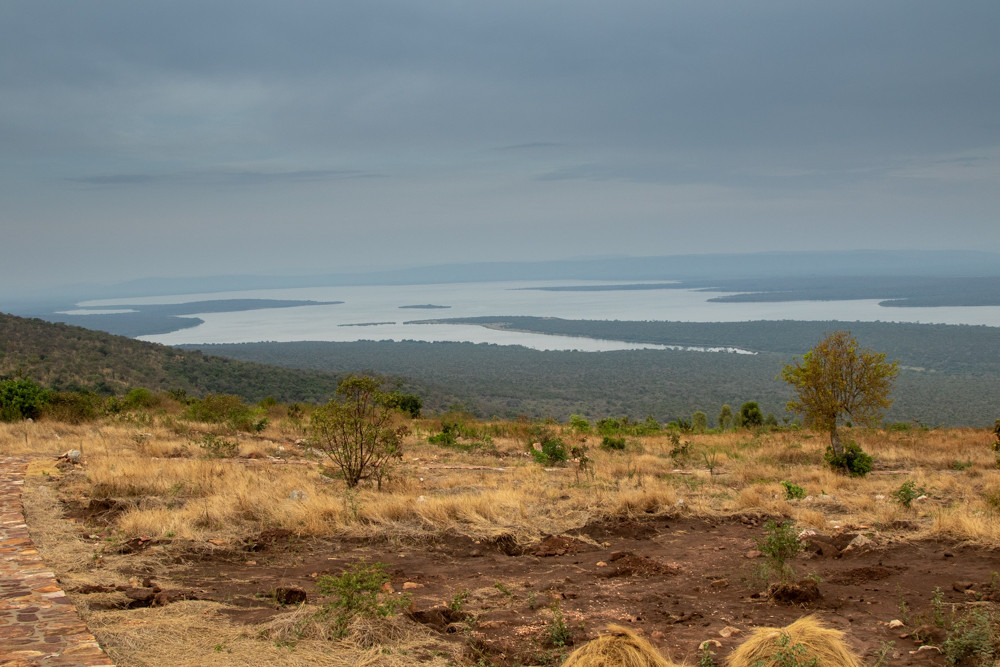 Akagera National Park, the largest wetland in Africa.