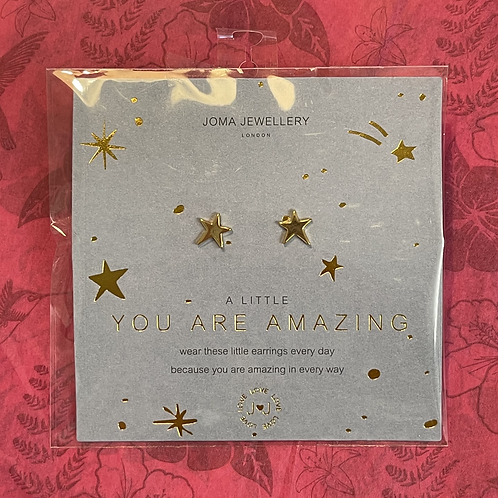 You Are Amazing Earrings