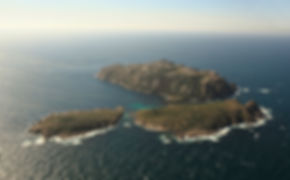 illas-1.jpg