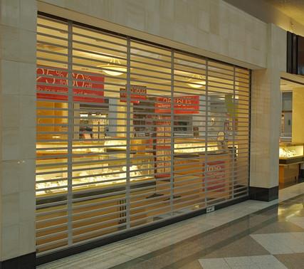Metro Door Rolling Grille - Lexan Panel
