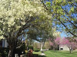 AWCI Spring Time