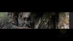 Abrigo El Búho - Panorama