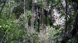 Caverna El Tigre - Cavidad principal