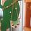 Thumbnail: Collier ou Boucles d'Oreilles Fait main