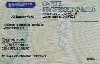 Recto_Carte_Professionnelle_Gestion_immo