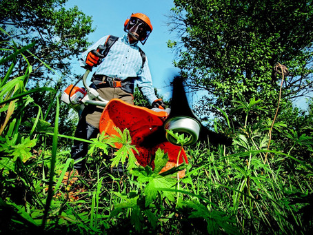 A la recherche de paysagistes/jardiniers en partenariat avec Bulle d'air Conciergerie