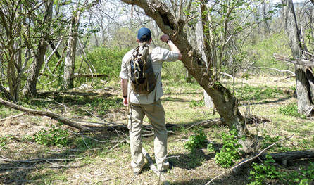 The Get-Home Bag (Not a Bug-Out Bag!)