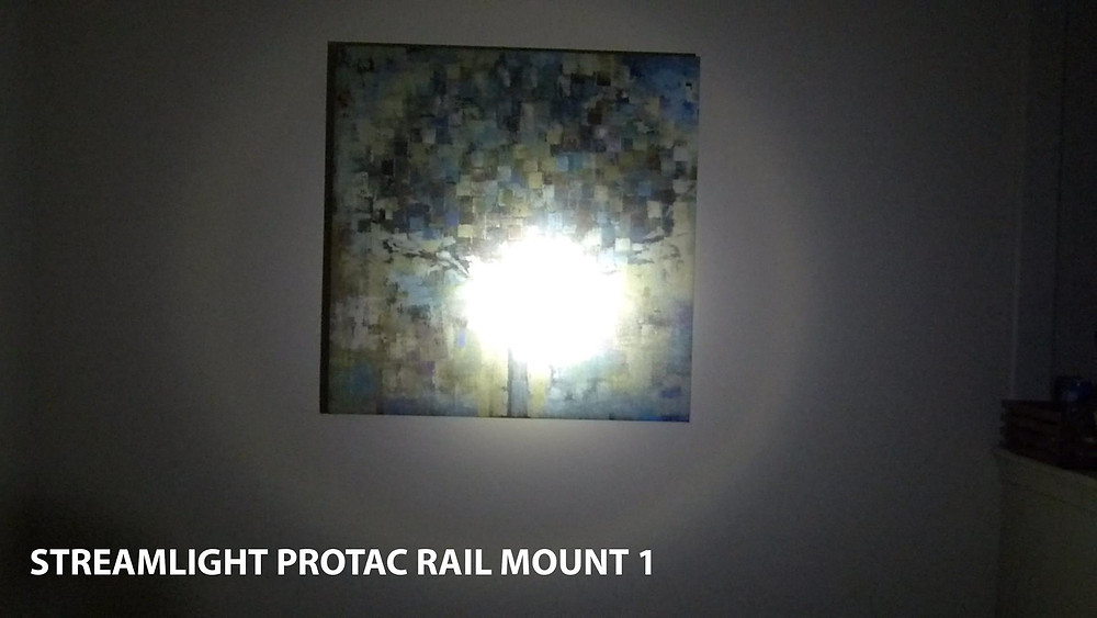 Protac Rail Mount 1 (350 Lumens) @15ft
