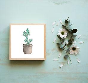 Miniature Plant Print.jpg