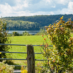 A Fence View