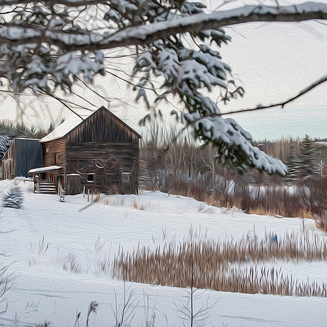 Winter at the Farm