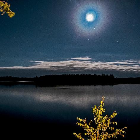 Moonlite Glow