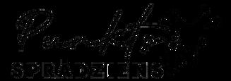 punkts logo.png