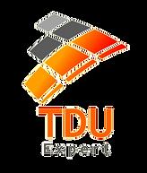 logo%20tdu%20expert_edited.png