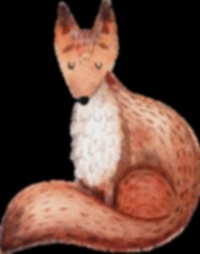Zeichnung von Fox