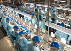 Staff-Track-Food-Processing-Plant