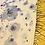 Thumbnail: Paramecium