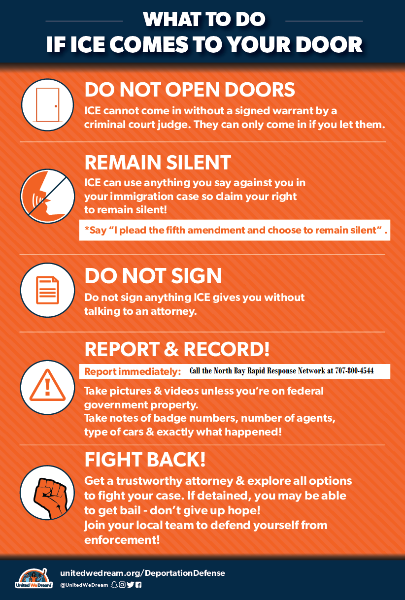Know Your Rights Posters
