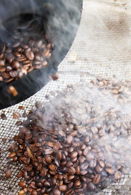 Kaffeeröstung, Kaffeebohnen