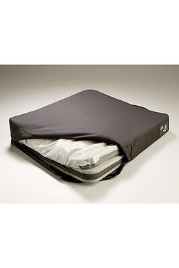 Jay 2 Plus Cushion