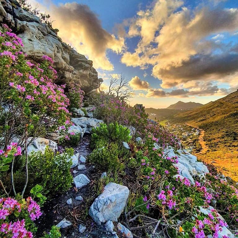 Take back Our Mountains 24