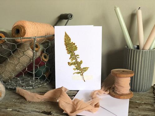 Fern Leaf -  Pressed Flower Card