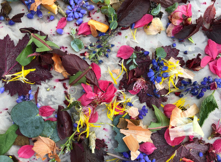 Bundle Dyeing with Petals for British Flowers Week