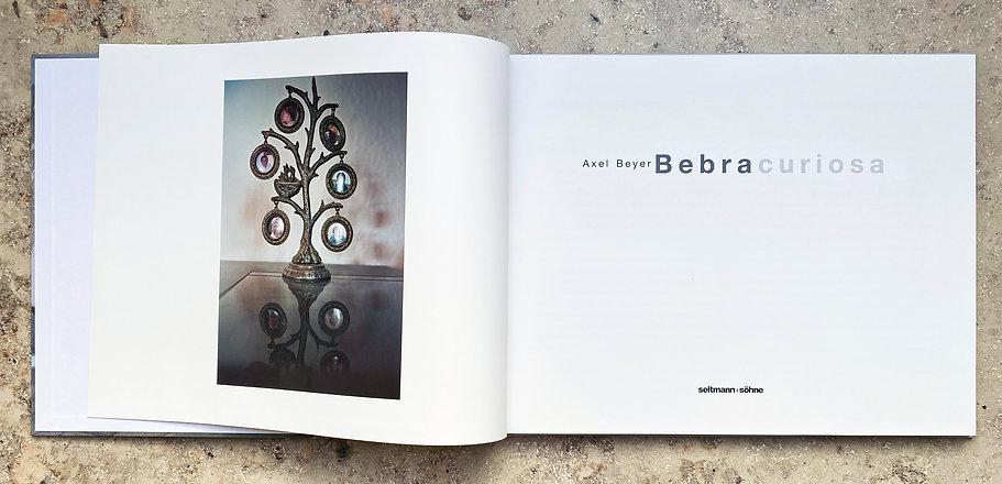 Bebra_Book_DS01.jpg