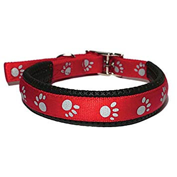 Rosewood Soft Protection Reflective Collar - Red
