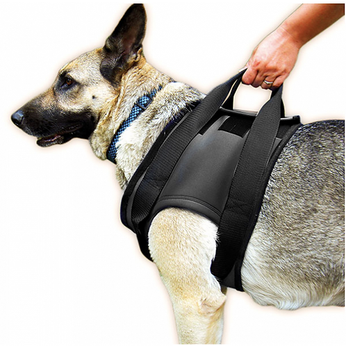 Julius K9 Support and Lift Dog Harnesses - Front