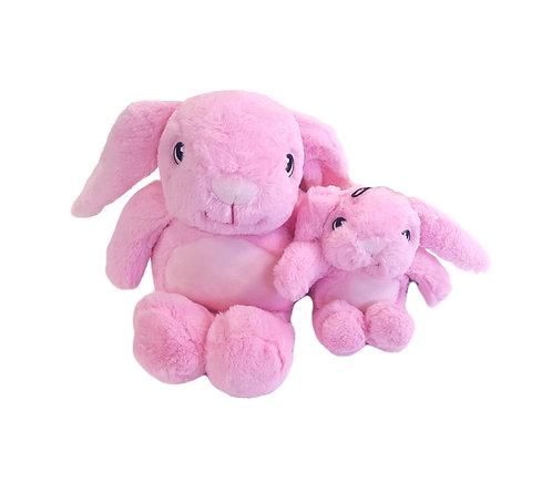 Gor Pets Hugs Mommy Rabbit