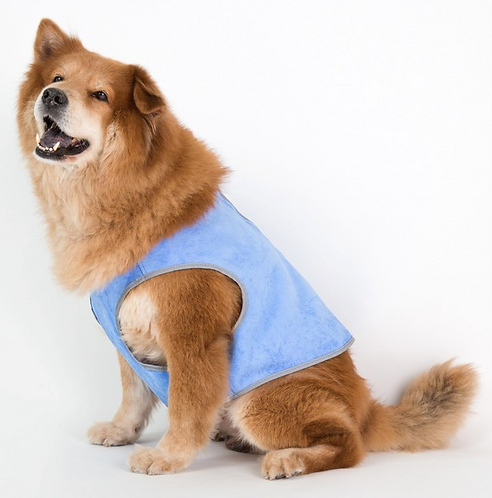 Coco Jojo Cooling Vest 64cm M