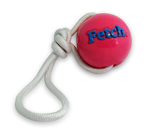 Planet Dog Orbee Tuff Fetch Ball W / Rope-Pink